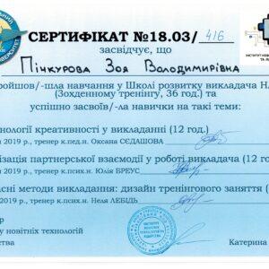 МЕВіБ_Пічкурова_18
