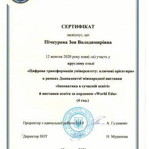 МЕВіБ_Пічкурова_21