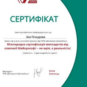 МЕВіБ_Пічкурова_22